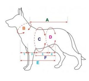 kutyaruha méretek